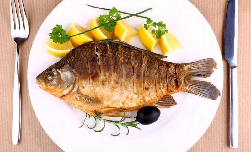 أهم فوائد أكل السمك